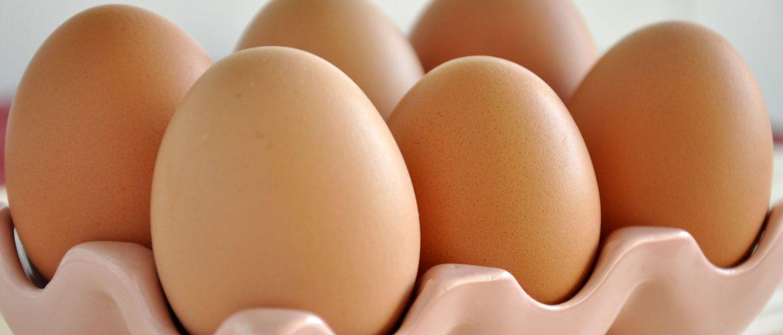 comer ovo faz mal